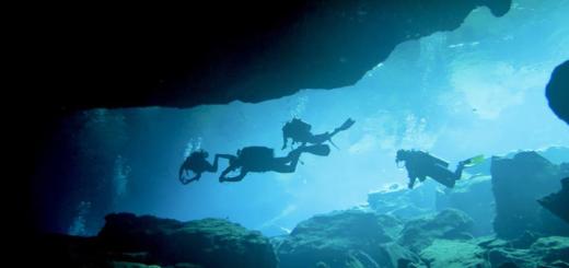 Diving photo by Marla Goodman